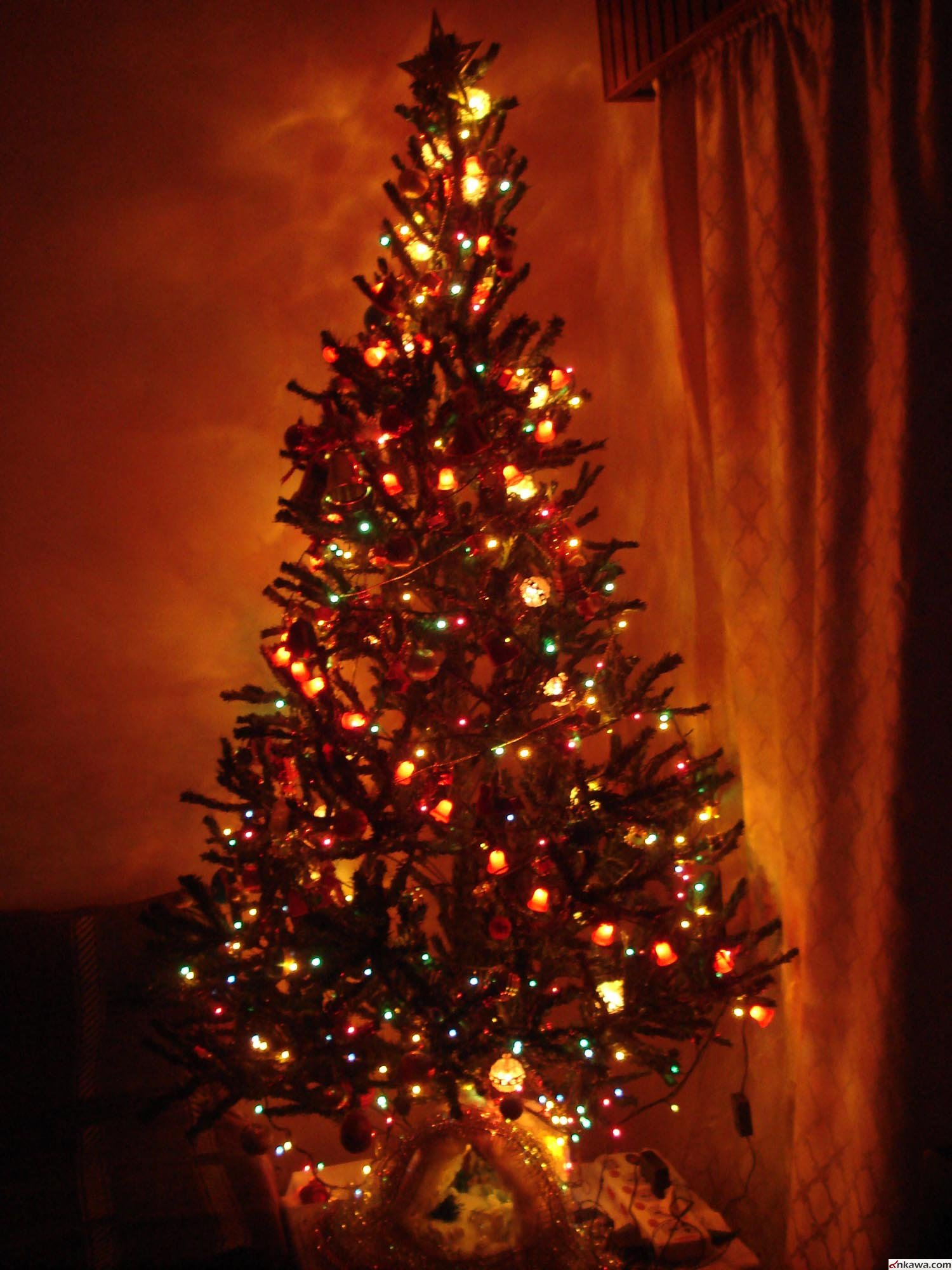 رد اشجار عيد الميلاد المنزلية